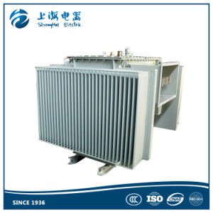 13.8kv 50kVA Oil Immersed Power Transformer pictures & photos