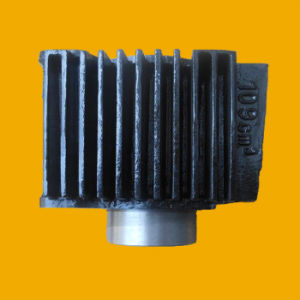 OEM, High Quality Motorcycle Cylinder for Dayang100 Wholesale pictures & photos