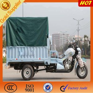 Heavy Strong Cargo Tricycle pictures & photos