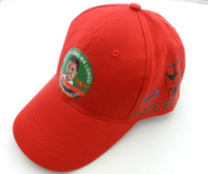 Hot Sale Promotional New Design Custom Caps pictures & photos