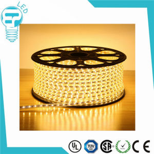 Waterproof IP65 SMD3528 LED Chip 220V LED Strip pictures & photos