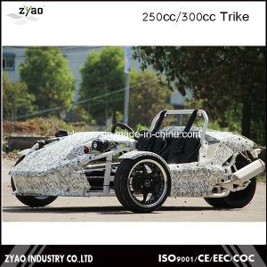 EEC 250cc Reverse Trike pictures & photos