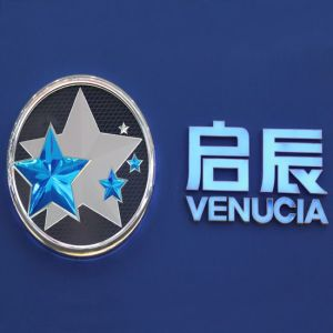 Vacuum Forming Electroplating Chrome Car Sticker ABS Car Logo pictures & photos
