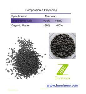 Humizone Hi-Humic: Potassium Humate 70% Crystal (H070-C) pictures & photos