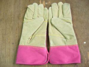 Garden Glove-Leather Glove-Safety Glove-Work Glove-Light Duty Glove-Labor Glove pictures & photos
