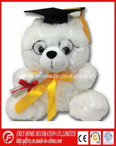 White Teddy Bear for Graduation Students