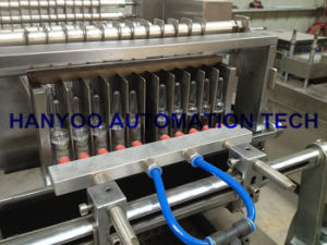 Dzh-100p Automatic Ampoule Bottle Cartoning Machine pictures & photos