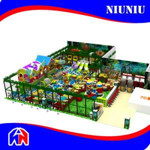 Cheer Amusement Customized Theme Indoor Playground pictures & photos