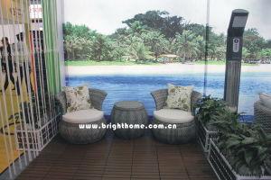 PE Rattan Wicker Furniture/Hotel Furniture/Outdoor Garden Furniture (BP-232R) pictures & photos