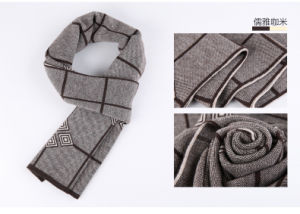 Men′s Fashion Wool Polyester Nylon Acrylic Woven Winter Scarf (YKY4620) pictures & photos