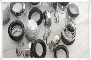 as-R3n&R32&R37g, Conical Spring Mechanical Seal Replace Burgmann M3n/M32/M37g pictures & photos