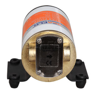 Low Pressure Electric Fuel Pump 12V Gear Pump pictures & photos