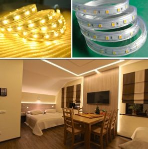 White Waterproof High Quality 5630 LED Strip 220V pictures & photos