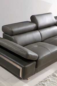 Function Conner Leather Sofa (SBL-9127) pictures & photos