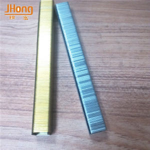 Colored Galvanzied Staple Clips Made in China pictures & photos