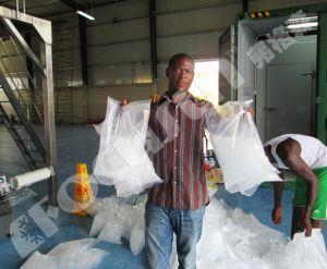 25tons Tube Ice Machine for Nigerian pictures & photos