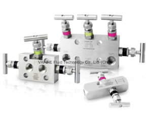 Direct Mount Instrument Remote Mount Instrument 3- Valve Manifolds pictures & photos