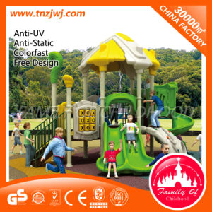 Amusement Park Playground Outdoor Playground Equipment pictures & photos