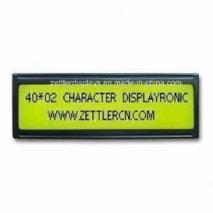 40X2 Character LCD Module: Acm4002e Series pictures & photos