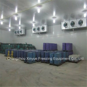 Explosion Proof Cold Storage Room pictures & photos
