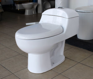 Popular Model White Ceramic Siphonic One-Piece Toilet for South America pictures & photos