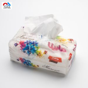 Newest Virgin Pulp Boxed Facial Tissue pictures & photos