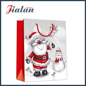 BSCI Supplier Custom Logo Printed Christmas Design Paper Bag pictures & photos