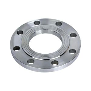 ANSI Class 150 6 Inch Pipe Flange pictures & photos