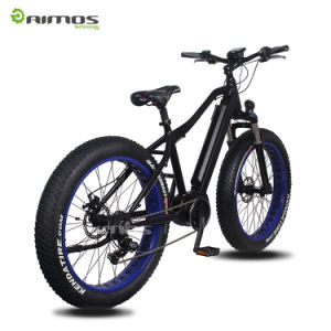 Electric Bike Mountain Ebike with 48V 350W MID Drive Motor pictures & photos