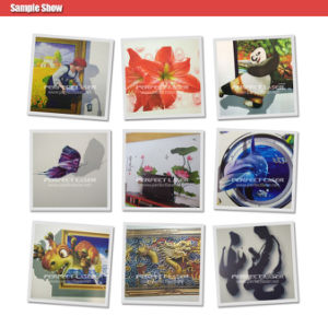 3D High Resolution House Decoration Vertical Inkjet Wall Printer pictures & photos