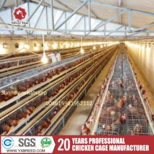 Chicken Wire Mesh Farming Machinery for Chicken Layers pictures & photos