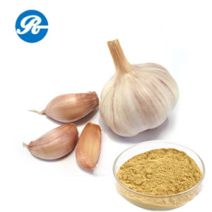 Plant Extract Allicin for The Sterilization pictures & photos