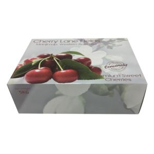 Factory Price Carton Cherry Tomatoes Packaging Box pictures & photos