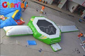 New Design Inflatable Aquatic Trampoline pictures & photos