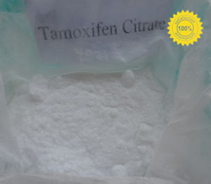 99% High Quality Antineoplastic Tamoxifen Citrate