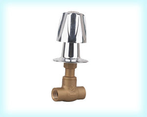 Customized Quality Globe Valve with Zinc Handle (AV4005) pictures & photos