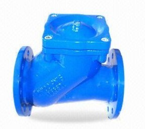 Epoxy Coating Ductile Iron Ball Check Valve pictures & photos