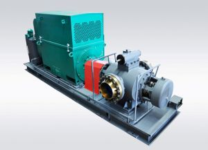 Pump Skid-Mounted System/Double Screw Pump pictures & photos
