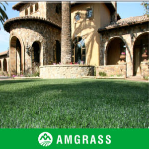Natural Look Artificial Lawn for Landscaping, Landscaping Artificial Grass (AMFT424-40D) pictures & photos