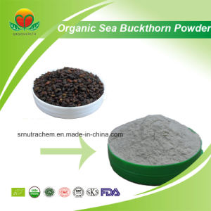 High Quality Organic Sea Buckthorn Powder pictures & photos