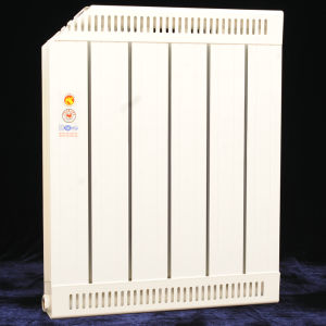Electrophoresis Spraying Painted Home Aluminum Radiator pictures & photos