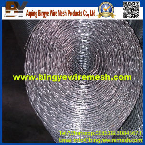 China Manufacturer Crimped Stainless Steel Wire Mesh (ISO factory) pictures & photos
