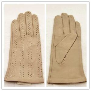 Lady Fashion Leather Gloves (JYG-25131) pictures & photos