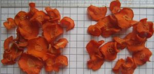 Air Dried Carrot