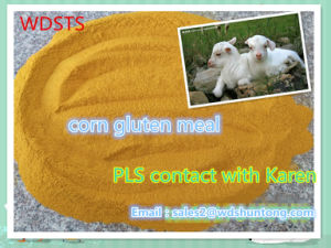 Protein Powder Corn Gluten Meal for Fodder Hot Sale pictures & photos