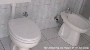Modified Sea Container Toilet/Container Toilet / Portable Toilet / Mobile Toilet (shs-fp-sanitory007) pictures & photos