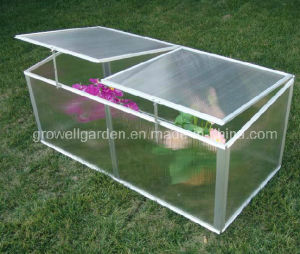 Cold Frame Mini Greenhouse for Young Plants (C422) pictures & photos
