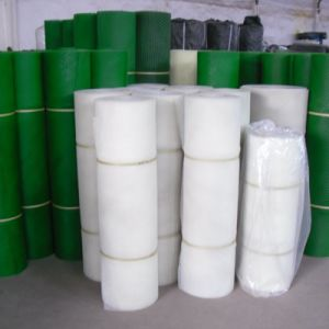 Manufacture Hot Sale with Good Quality Plastic Mesh pictures & photos