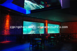 Acrylic Restaurant Wall pictures & photos