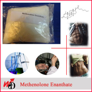 Factory Directly Supply Steroid Powder Primobolan Methenolone Enanthate pictures & photos